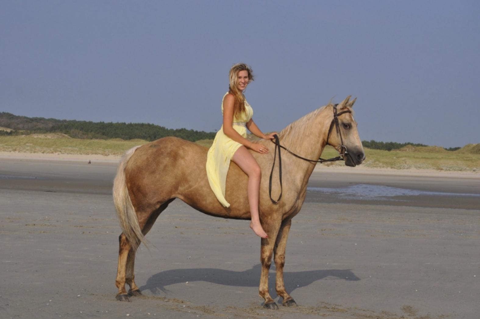 Voyagez-vous à cheval quand les autres foncent en TGV ?